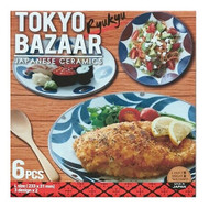 Tokyo Bazaar Ryukyu Japanese Ceramics 6PCS Dinner Plates Set | Fairdinks