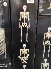 """60""""/152cm Animated Skeleton with Sound"""