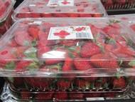 Strawberries 850g | Fairdinks