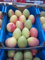 Calypso Mango 3.75kg Tray | Fairdinks