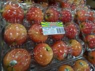 Royal Gala Apples 12PK 2.5Kg Product Of Australia | Fairdinks