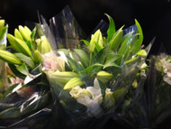 Growers Bunch Oriental Lily | Fairdinks