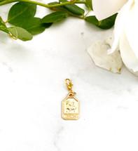 Zodiac Charm (Add To Charmed Necklace/Bracelet In One)