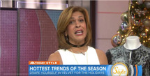 Orion Choker - Silver: Seen on Today Show Hoda Kotb!