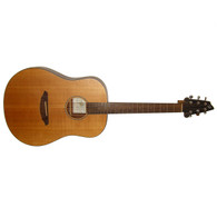 NEW BREEDLOVE PASSPORT D20