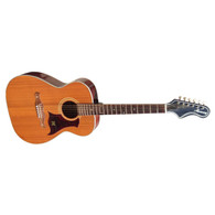 SOLD - HARMONY S-69 ACOUSTIC