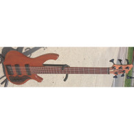 SOLD - BIRDSONG 5-STRING BASS