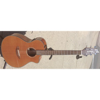 NEW BREEDLOVE PURSUIT CONCERT CE W/ GIG BAG