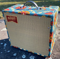 NEW BENSON NATHAN JUNIOR REVERB COMBO