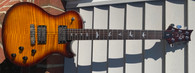 PAUL REED SMITH SE 245
