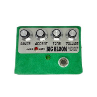AMPLIFIED NATION . . . .       BIG BLOOM OVERDRIVE
