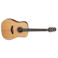 NEW TAKAMINE GD20