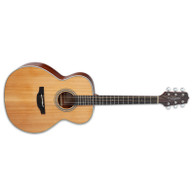 NEW TAKAMINE GN20