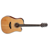 NEW TAKAMINE GD20CE