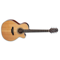 NEW TAKAMINE GN20CE