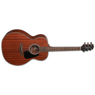 NEW TAKAMINE GN11M