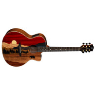 LUNA VISTA BEAR ACOUSTIC/ELECTRIC W CASE
