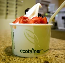 compostable-ice-cream-cup.jpg