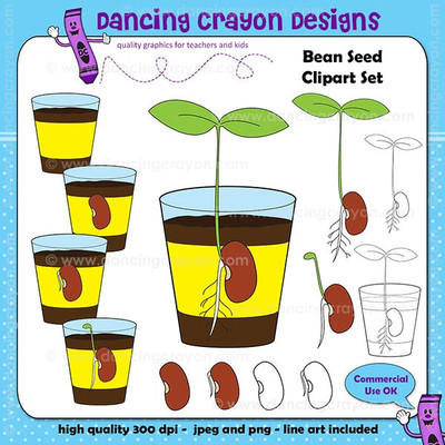 Bean Sprout, Seeds, and Seedlings Clipart