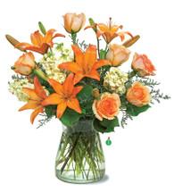 Orange Glow Bouquet