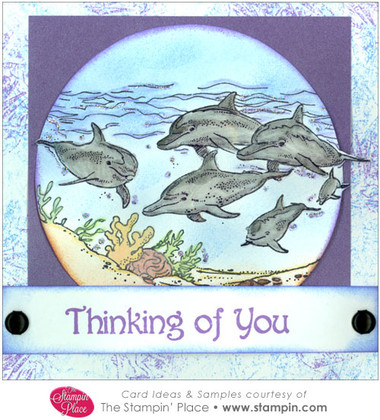 Dolphin Scene Thinking of You : Card Ideas & Samples ...