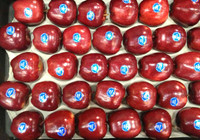 Fancy Red Apple Tray Large - 6KG