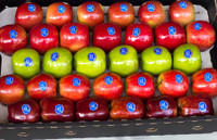 Fancy Mixed Apple Tray Large - 6KG