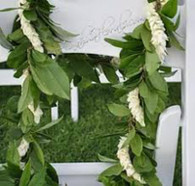 This is the classic wedding lei for men and some women.  The scent is amazingly lovely.    The tiny, fragrant pikake flower, however, is very fragile and often doesn't ship well so wrapping the maile with white orchid, tuberose or tuberose and white orchid mix are equally popular alternatives.    Shown here with HIlo Maile.  Life:  The pikake is very fragile and will last only one to two days, the maile, a week.  Care:  The maile is our most durable fresh lei... the pikake is our most fragile... so keep the lei in a plastic bag in the fridge and touch it as little as possible until it's time to wear/give it.  Fragrance: Beautifully rich floral (because of the pikake)