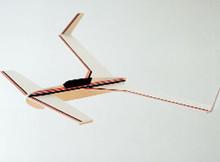 Polaris Glider by Dare - (DA-008)