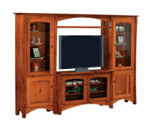 Master TV Bridge Unit