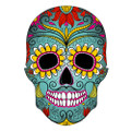 Sugar Skull Colorful Birthday ~ Edible Icing Image