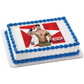 WWE John Cena Approved ~ Edible Icing Image