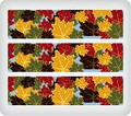 Autumn Leaves ~ Edible Icing Image Border Strips