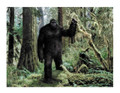 Bigfoot Edible Icing Image for 1/4 sheet cake