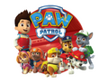 Paw Patrol On Tour Edible Icing Image