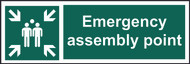 Emergency Assembly Point SAV Sign (300 x 100mm)