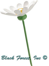 5248-1B Wendt and Kuhn Marguerite for Blossom Child 5248-1