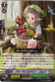 Fruit Basket Elf C BT08/067