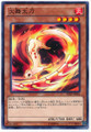 Fencing Fire Ferret SD29-JP016 Common
