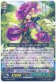 Lisianthus Musketeer, Loraine G-CHB01/036 R
