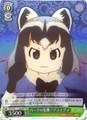 Common Raccoon, Crisis for the Park! KMN/W51-T13R RRR