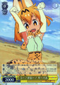 Serval, RAWR! KMN/W51-006 RR