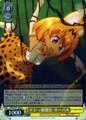 Serval, Ditzy Girl Lives KMN/W51-008 R