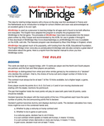 MiniBridge Program & Instructions