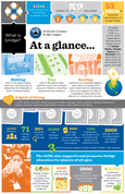 Bridge at a Glance Infographic Flier