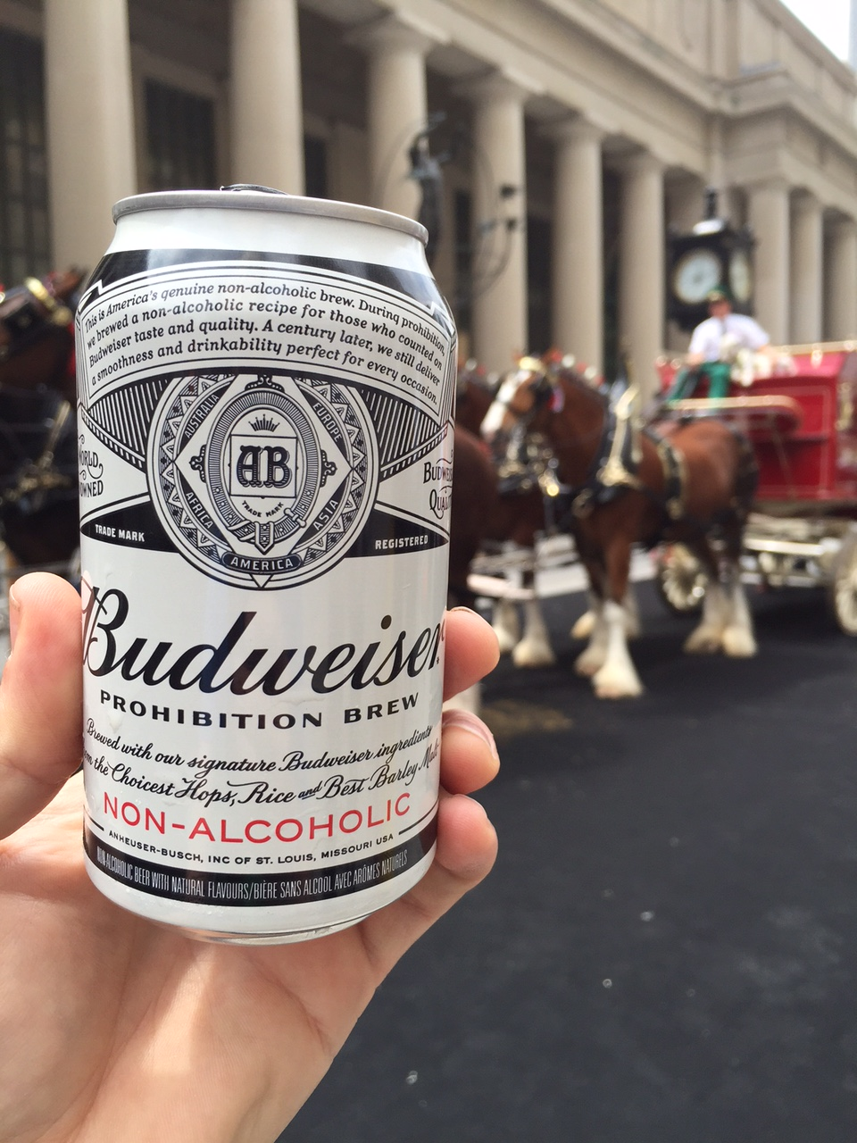 The World's First Review of Budweiser Prohibition Brew Non