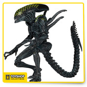 "Series 7 Grid Alien  new figures from Alien vs Predator, which is the perfect companion for your collection. Grid Alien feature over 30 points of articulation and bendable tails, and stand over 9"" tall."