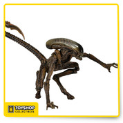 Series 8 focuses on 1992's Alien 3 Dog Alien comes in brown with over 30 points of articulation and bendable tail. Each highly articulated Dog Alien is over 9 inches tall.