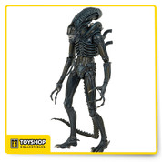 "Celebrate the 30th anniversary of Aliens with a new 1/4 scale figure from the thrilling 1986 follow-up to the legendary horror film. This is the first appearance of the 1986 Warrior in our 1/4 scale line!  The menacing Warrior stands over 22"" tall, and has a hinged jaw that opens, revealing an inner mouth that extends for realistic movie action. It has almost 30 points of articulation, including double knee joints and a bendable tail, and is movie-accurate, down to the bluish tint that actually came from the lighting used in the film to heighten the cold, alien nature of these creatures."