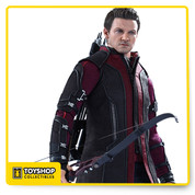 The movie-accurate Hawkeye Collectible Figure is specially crafted based on the image of Jeremy Renner as Hawkeye in Avengers: Age of Ultron, and features a newly developed head sculpt, new outfit, improved articulation for action poses, a freshly designed bow and arrows, as well as a specially designed figure stand.  The Hawkeye Sixth Scale Collectible Figure features:  •	Authentic and detailed likeness of Jeremy Renner as Hawkeye in Avengers: Age of Ultron •	Approximately 30 cm tall •	Body with over 30 points of articulation •	Movie-accurate facial features with detailed wrinkles and skin texture •	Six (6) pieces of interchangeable palms with finger tabs on left palms including:  - One (1) pair of relaxed palms  - One (1) right palm for holding bow  - Three (3) left palms of different styles for holding arrow •	Each head sculpt is specially hand-painted